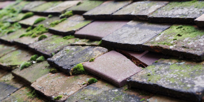 Stanton roof repair costs
